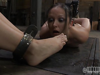 BDSM Looks Adorable With The Action Of The Masturbation